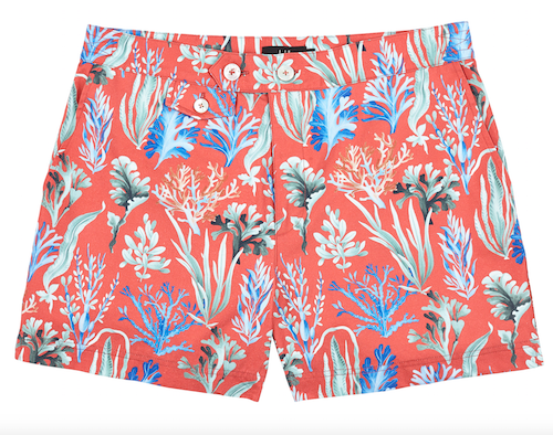 dunhill men's seaweed swimshorts