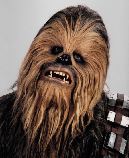 Chewbacca style icon the chic geek