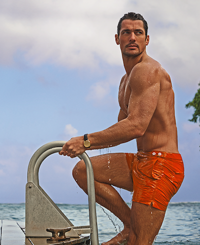 david gandy swimwear marks and spencer