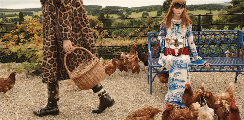gucci cruise campaign Chatsworth chickens Glen Luchford